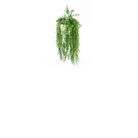 Valli Hanging Pot with Hanging Grass Bush - PLANTS IN POTS