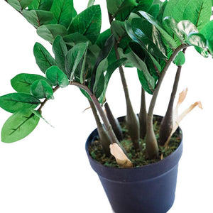 Zamifolia 64cm - ARTIFICIAL PLANTS