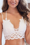 Lace And Luxury Padded Bralette: Ivory