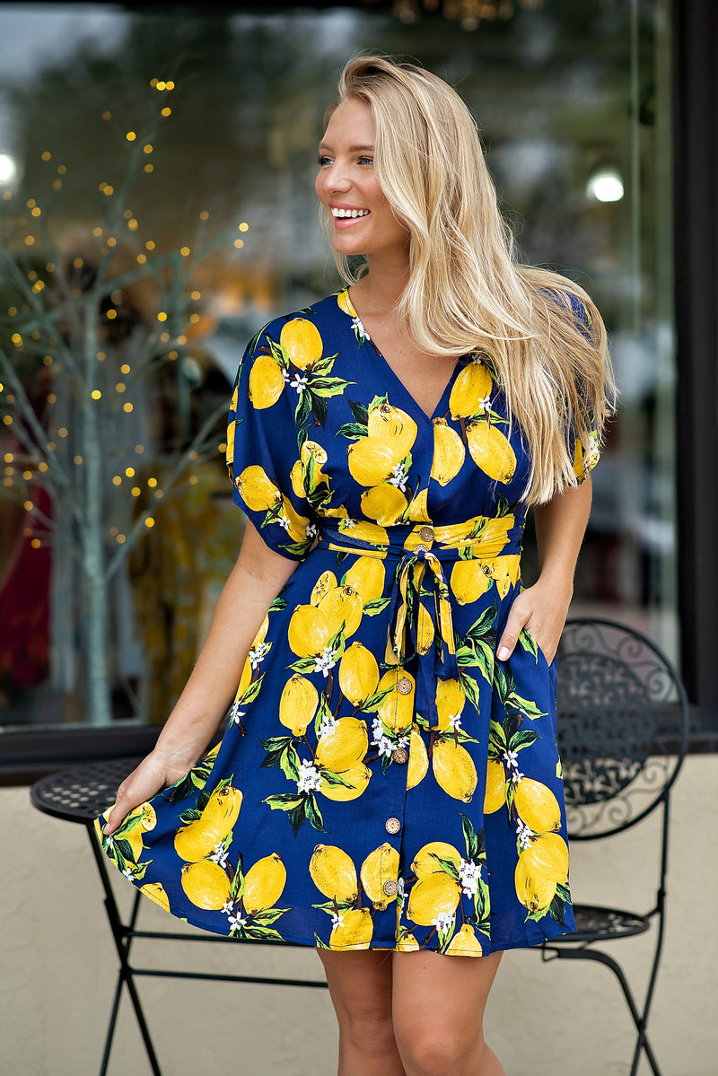 Sunshine And Lemonade Button Down Dress : Navy