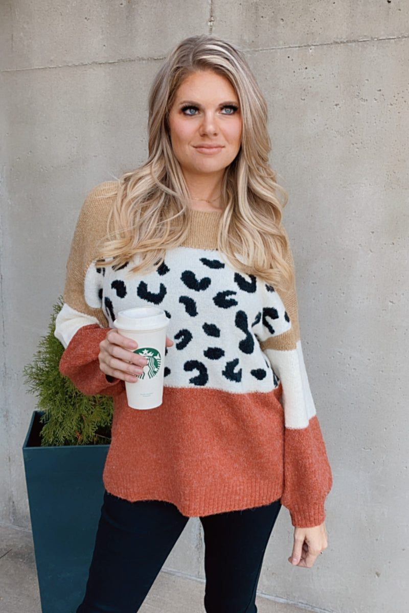 Break Away With Me Leopard Color Block Sweater : Taupe