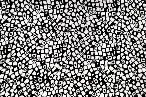 Rayon Bali Batiks-55010-Black and White #11