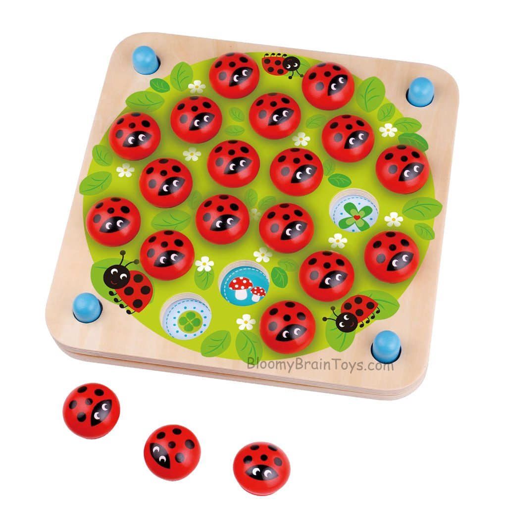 Memory Game - Lady Bug - Bloomy Brain Toys