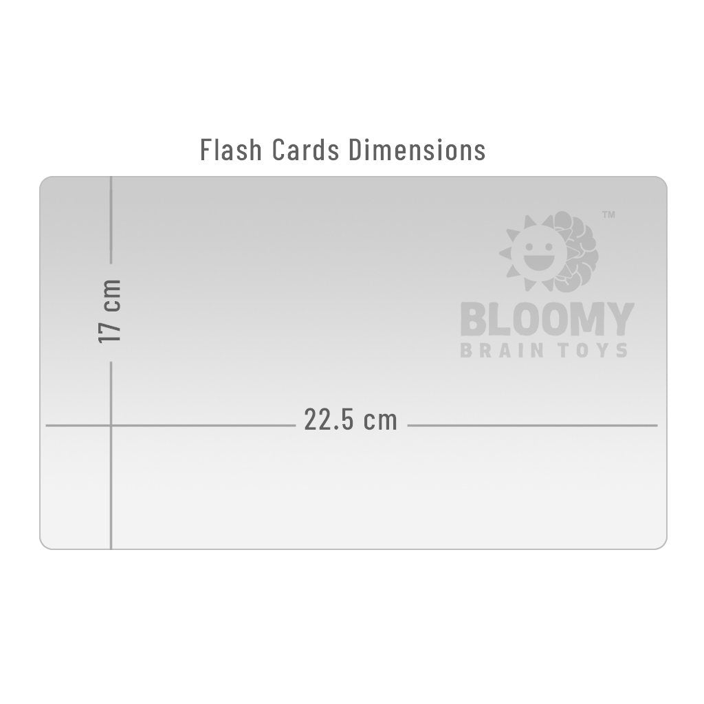 Things in Different Colours (RGB) - Baby Flash Cards - Bloomy Brain Toys