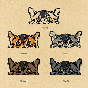 Cat breed colours