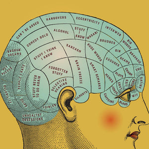 Phrenology art print detail