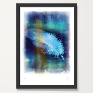 Plume feather art print