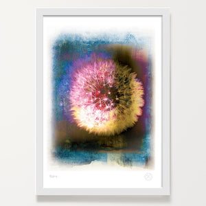 Wishes dandelion art print