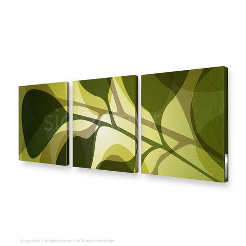 contemporary canvas art kuranda green triptych