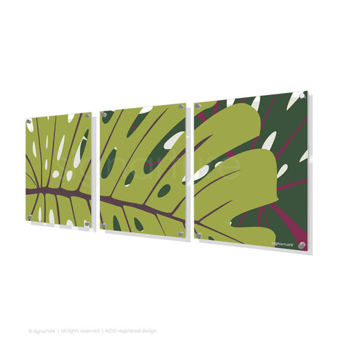 contemporary perspex art noosa green triptych