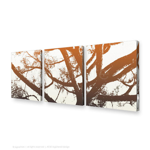tree canvas art balmoral orange triptych