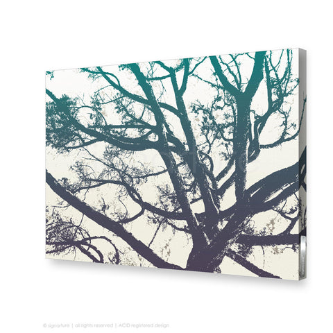 tree canvas art balmoral blue rectangular