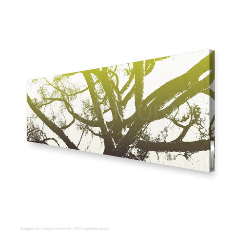 tree canvas art balmoral green panoramic