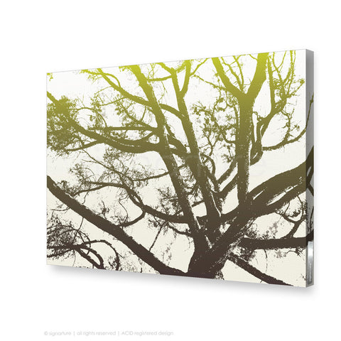 tree canvas art balmoral green rectangular