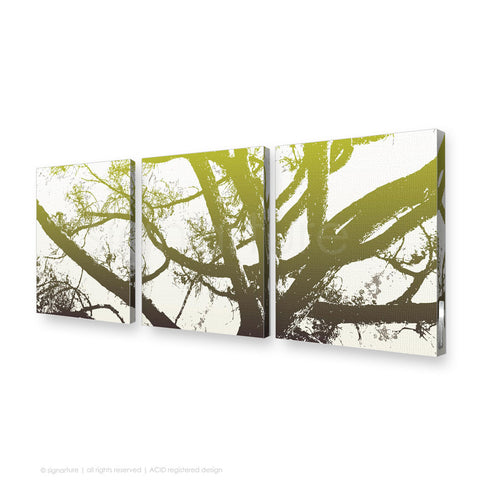 tree canvas art balmoral green triptych