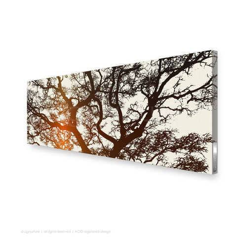 tree canvas art burrawang orange panoramic
