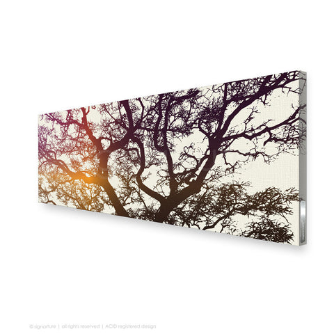 tree canvas art burrawang magenta panoramic
