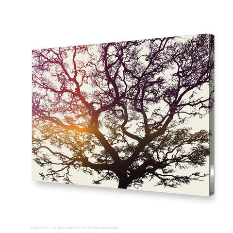 tree canvas art burrawang magenta rectangular