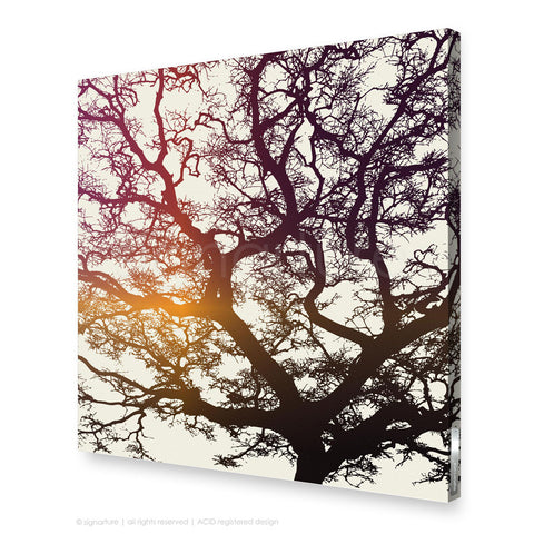 tree canvas art burrawang magenta square