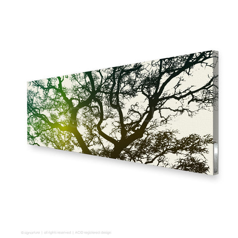 tree canvas art burrawang green panoramic