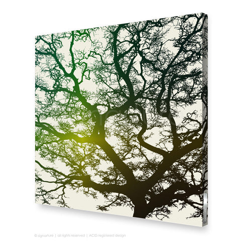 tree canvas art burrawang green square