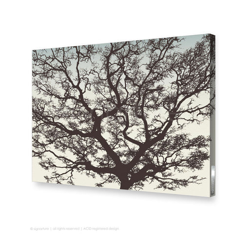 tree canvas art burrawang brown rectangle