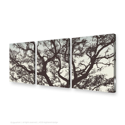 tree canvas art burrawang brown triptych