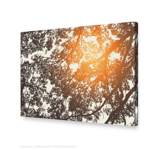 tree canvas art gleneagles orange rectangular