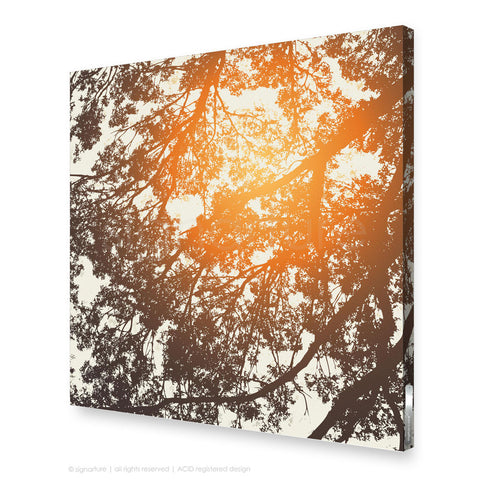 tree canvas art gleneagles orange square