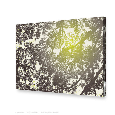tree canvas art gleneagles green rectangular