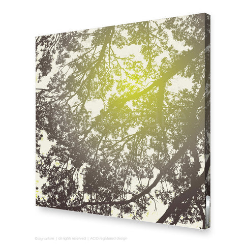 tree canvas art gleneagles green square