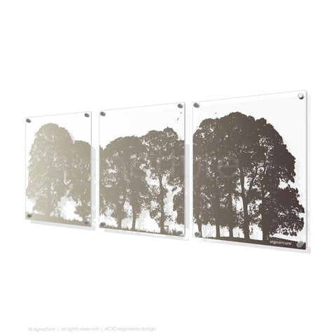 tree perspex art aberfeldy brown triptych