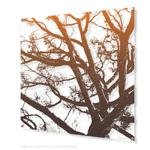 tree perspex art balmoral orange square