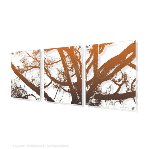 tree perspex art balmoral orange triptych