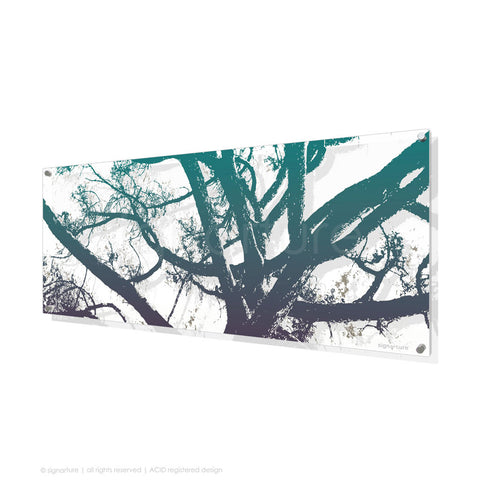 tree perspex art balmoral blue panoramic