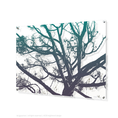 tree perspex art balmoral blue rectangular
