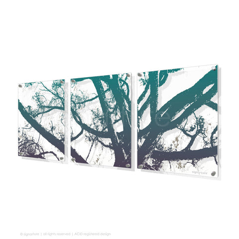 tree perspex art balmoral blue triptych