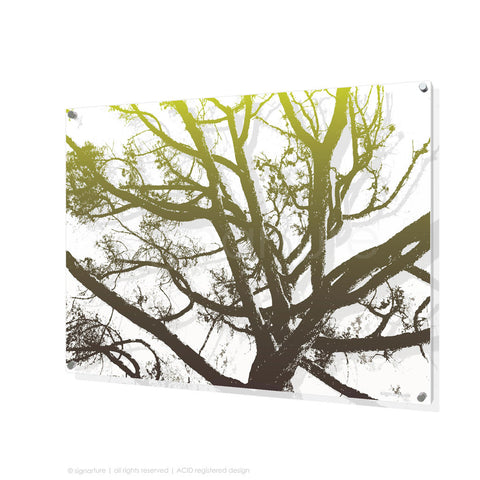tree perspex art balmoral green rectangular