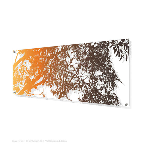 tree perspex art blackheath orange panoramic