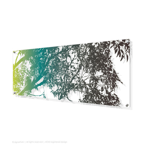 tree perspex art blackheath blue panoramic