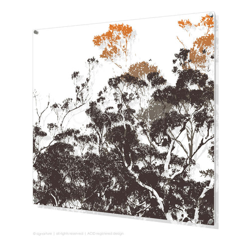 tree perspex art braidwood orange square