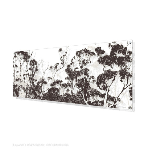 tree perspex art braidwood brown panoramic