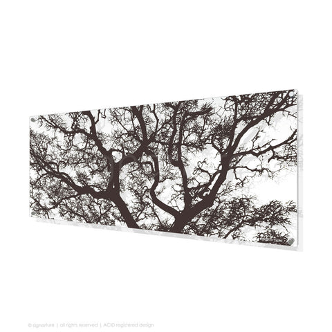 tree perspex art burrawang brown panoramic