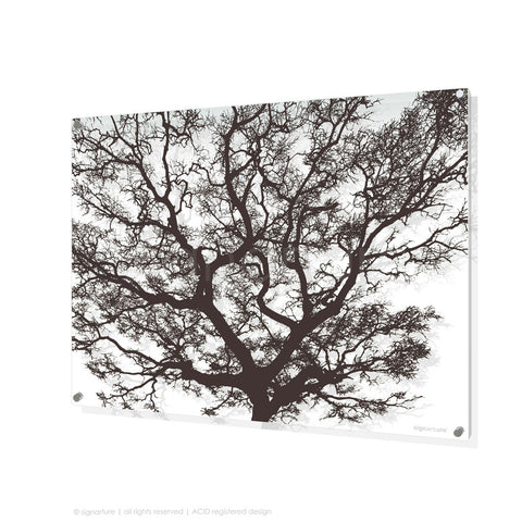 tree perspex art burrawang brown rectangular