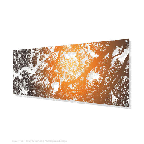 tree perspex art gleneagles orange panoramic