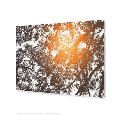 tree perspex art gleneagles orange rectangular