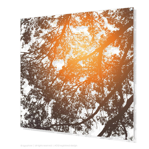 tree perspex art gleneagles orange square