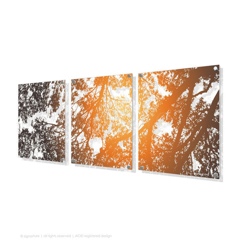 tree perspex art gleneagles orange triptych