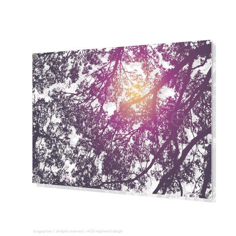 tree perspex art gleneagles purple rectangular