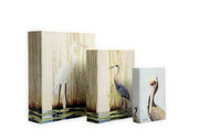 KSH201 Set of 3 Bird Books